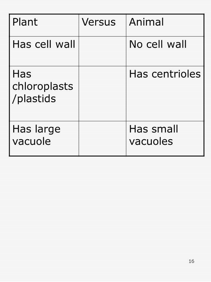 16 PlantVersusAnimal Has cell wallNo cell wall Has chloroplasts /plastids Has centrioles Has large vacuole Has small vacuoles
