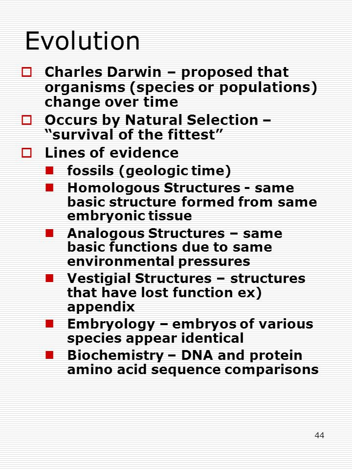 44 Evolution  Charles Darwin – proposed that organisms (species or populations) change over time  Occurs by Natural Selection – survival of the fittest  Lines of evidence fossils (geologic time) Homologous Structures - same basic structure formed from same embryonic tissue Analogous Structures – same basic functions due to same environmental pressures Vestigial Structures – structures that have lost function ex) appendix Embryology – embryos of various species appear identical Biochemistry – DNA and protein amino acid sequence comparisons