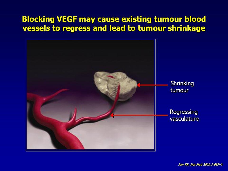 Shrinking tumour Shrinking tumour Regressing vasculature Regressing vasculature Jain RK. Nat Med 2001;7:987–9 Blocking VEGF may cause existing tumour