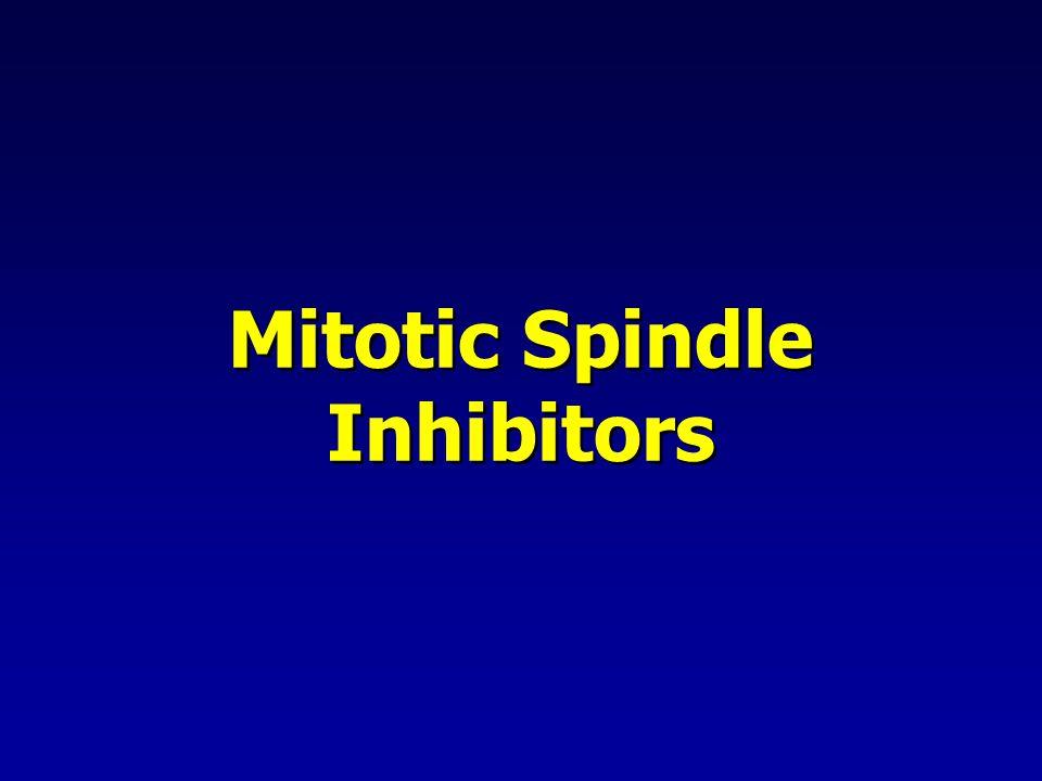 Mitotic Spindle Inhibitors
