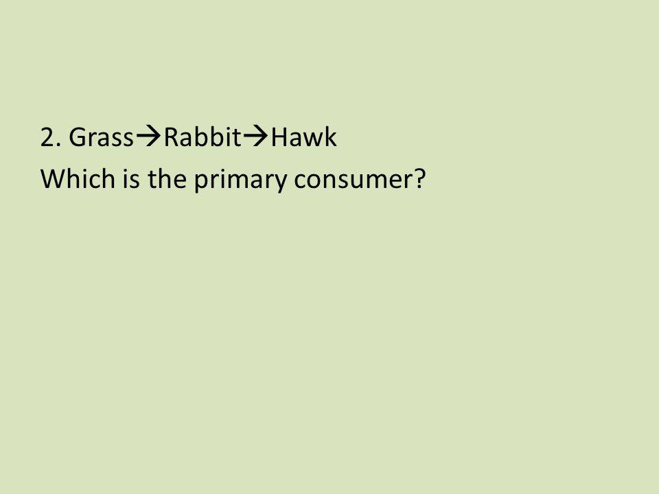 2. Grass  Rabbit  Hawk Which is the primary consumer