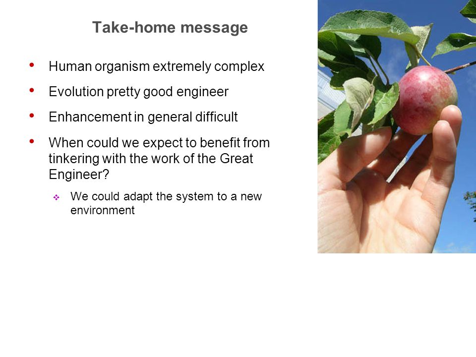 31 Take-home message Human organism extremely complex Evolution pretty good engineer Enhancement in general difficult When could we expect to benefit from tinkering with the work of the Great Engineer.