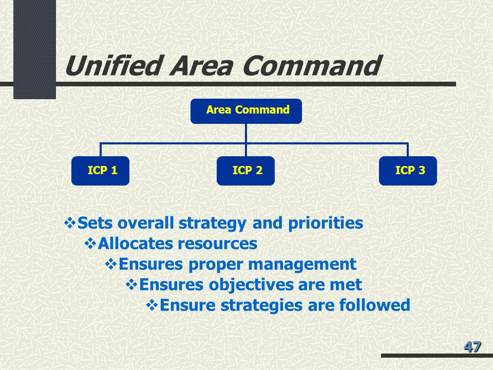 Unified Area Command Area Command ICP 1ICP 2ICP 3  Sets overall strategy and priorities  Allocates resources  Ensures proper management  Ensures objectives are met  Ensure strategies are followed 47