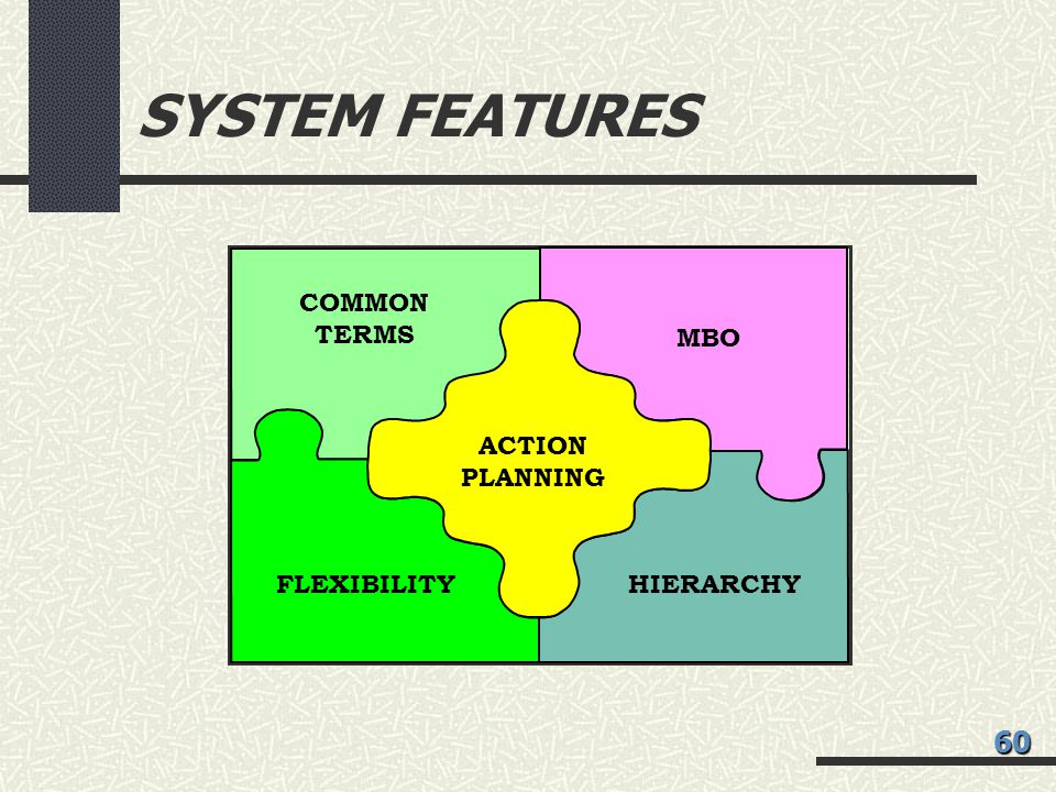 SYSTEM FEATURES MBO ACTION PLANNING FLEXIBILITYHIERARCHY COMMON TERMS 60