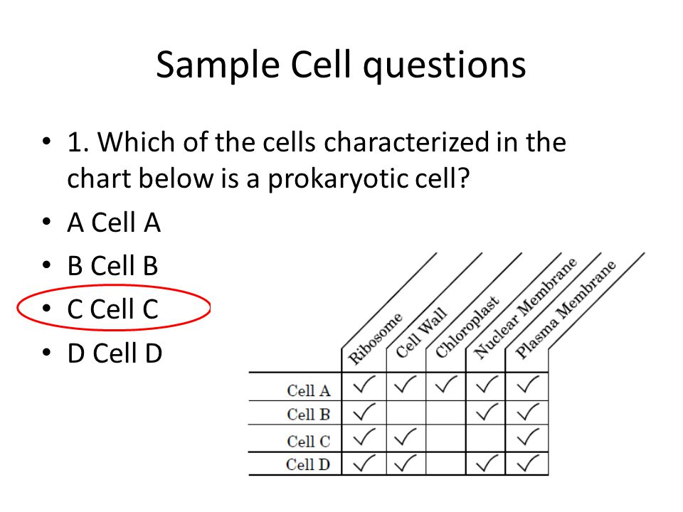 Sample Cell questions 1. Which of the cells characterized in the chart below is a prokaryotic cell? A Cell A B Cell B C Cell C D Cell D