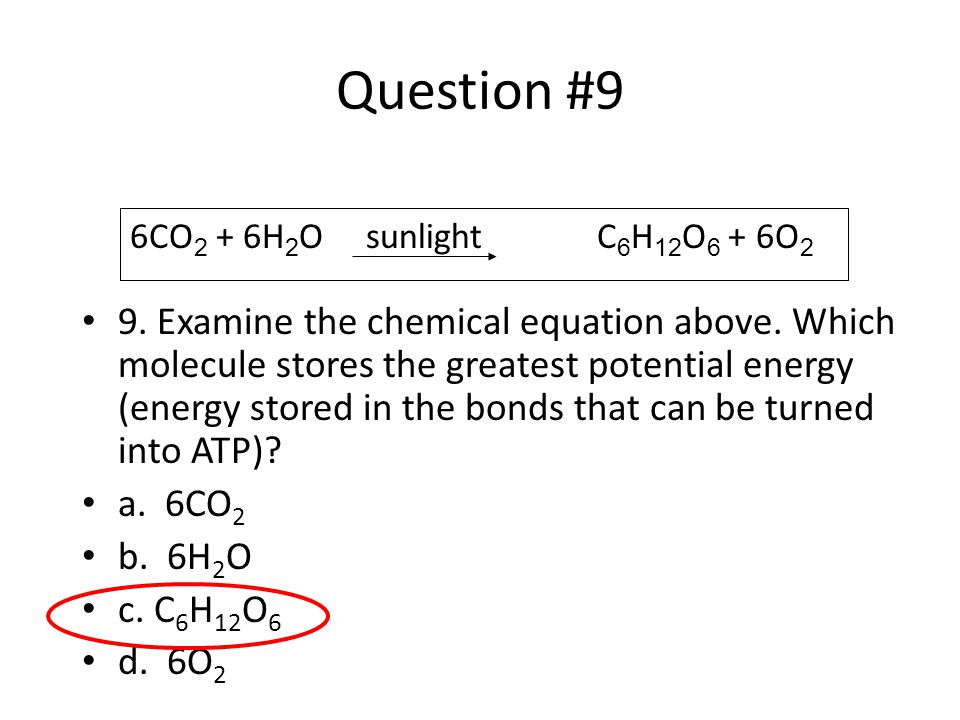 Question #9 9. Examine the chemical equation above. Which molecule stores the greatest potential energy (energy stored in the bonds that can be turned