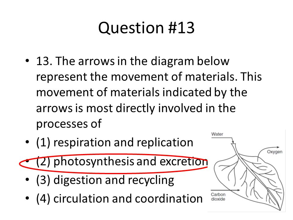 Question #13 13. The arrows in the diagram below represent the movement of materials. This movement of materials indicated by the arrows is most direc