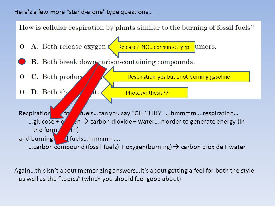 Here's a few more stand-alone type questions… Respiration and fossil fuels…can you say CH 11!!!? ...hmmmm….respiration… …glucose + oxygen  carbon dioxide + water…in order to generate energy (in the form of ATP) and burning fossil fuels…hmmmm….