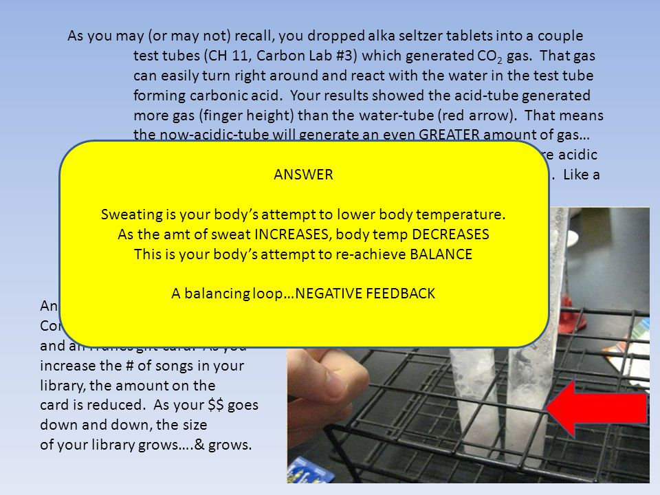 As you may (or may not) recall, you dropped alka seltzer tablets into a couple test tubes (CH 11, Carbon Lab #3) which generated CO 2 gas. That gas ca