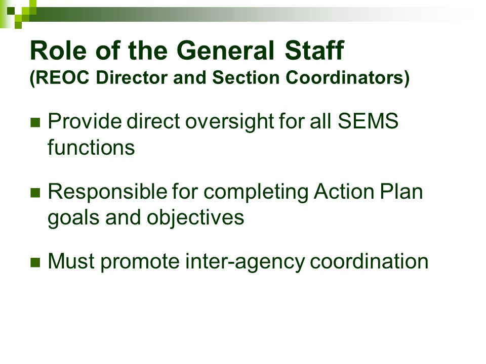 Role of the General Staff (REOC Director and Section Coordinators) Provide direct oversight for all SEMS functions Responsible for completing Action P