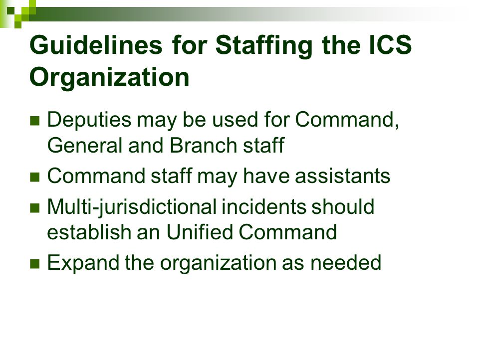 Guidelines for Staffing the ICS Organization Deputies may be used for Command, General and Branch staff Command staff may have assistants Multi-jurisd