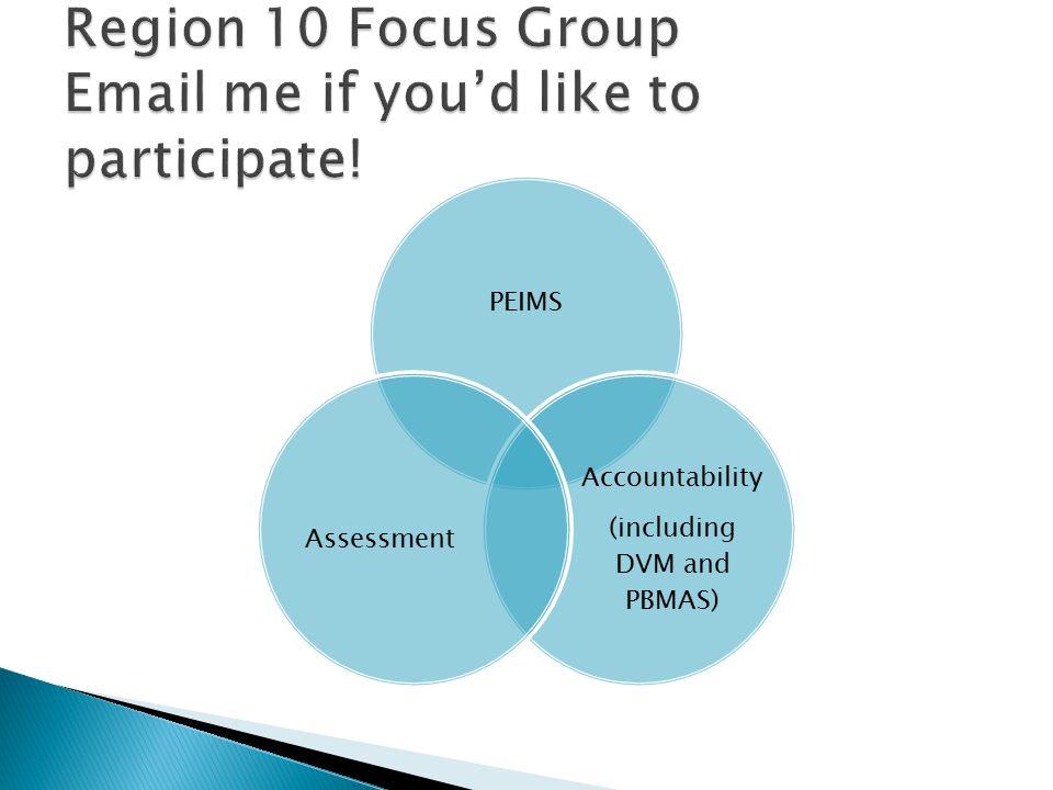 PEIMS Accountability (including DVM and PBMAS) Assessment