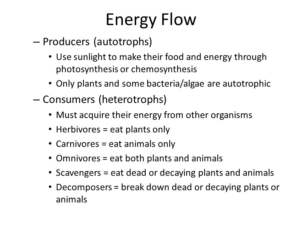 Feeding Relationships Food Chains = series of steps in which organisms transfer energy by eating and being eaten – Arrow shows the direction of energy transfer in the food chain – Ex.