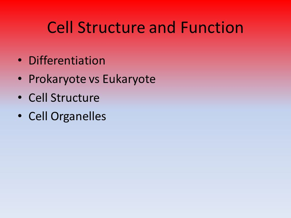 Cell Structure and Function Differentiation Prokaryote vs Eukaryote Cell Structure Cell Organelles