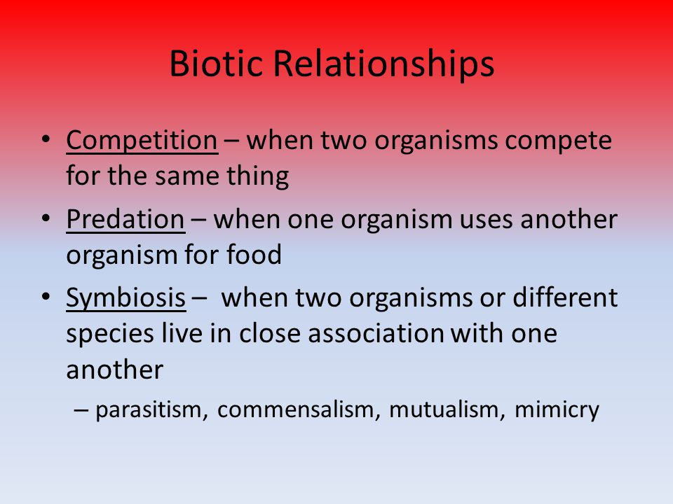 Biotic Relationships Competition – when two organisms compete for the same thing Predation – when one organism uses another organism for food Symbiosis – when two organisms or different species live in close association with one another – parasitism, commensalism, mutualism, mimicry