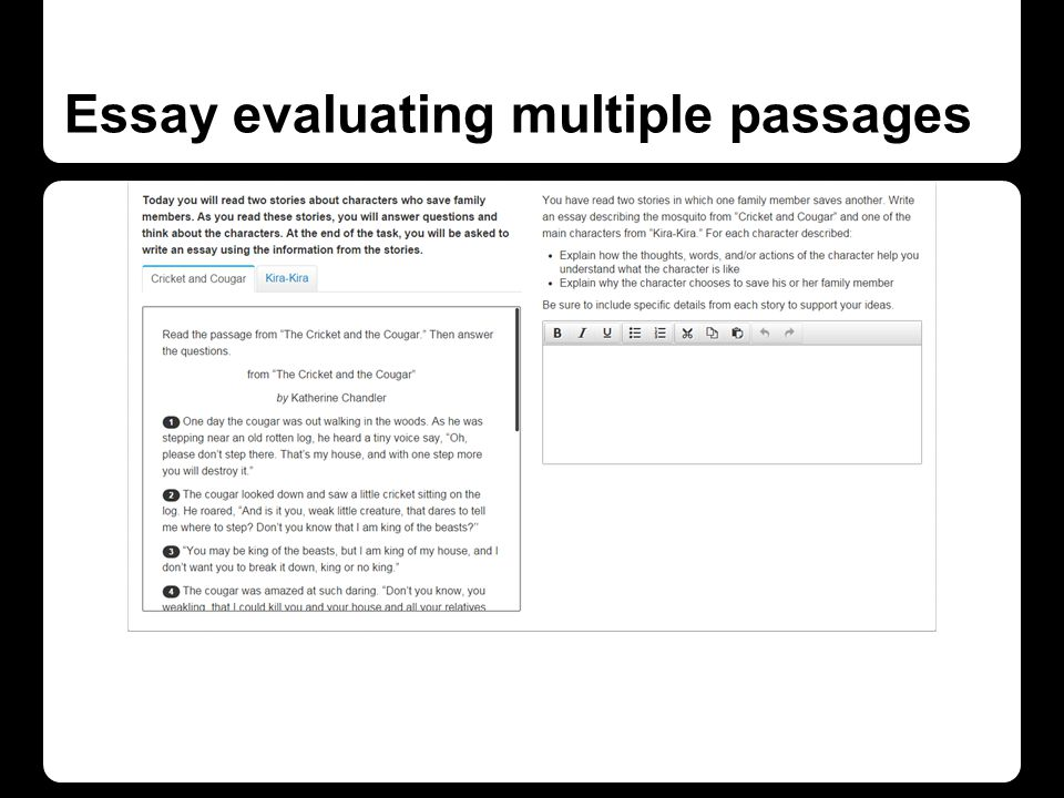 Essay evaluating multiple passages