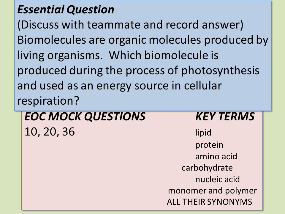 EOC MOCK QUESTIONSKEY TERMS 10, 20, 36 lipid protein amino acid carbohydrate nucleic acid monomer and polymer ALL THEIR SYNONYMS EOC MOCK QUESTIONSKEY