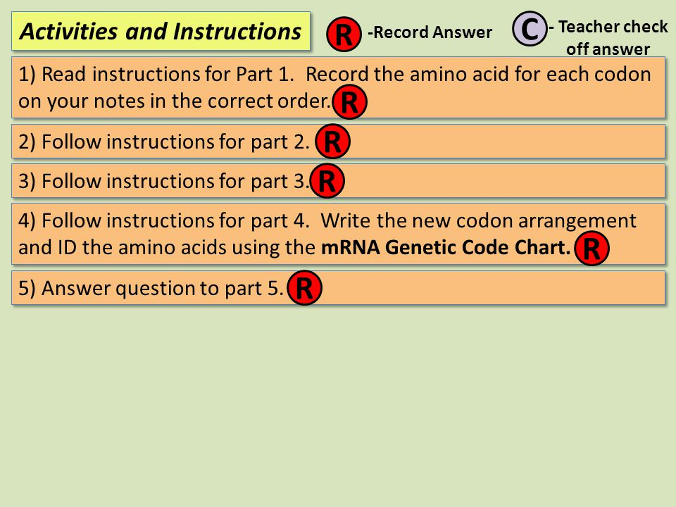 1) Read instructions for Part 1. Record the amino acid for each codon on your notes in the correct order. Activities and Instructions R C -Record Answ