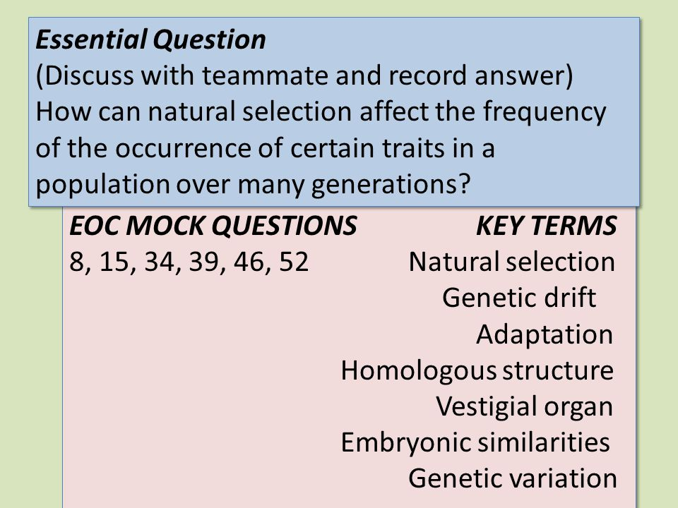 EOC MOCK QUESTIONSKEY TERMS 8, 15, 34, 39, 46, 52Natural selection Genetic drift Adaptation Homologous structure Vestigial organ Embryonic similaritie