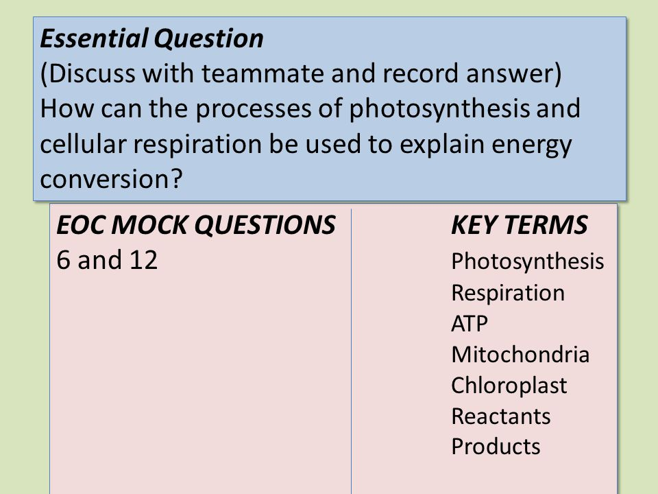 Activities and Instructions 2.Answer question 2 (pg 42).