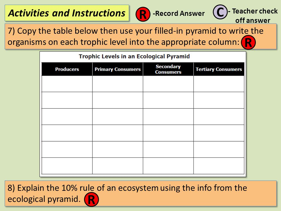 7) Copy the table below then use your filled-in pyramid to write the organisms on each trophic level into the appropriate column: Activities and Instr