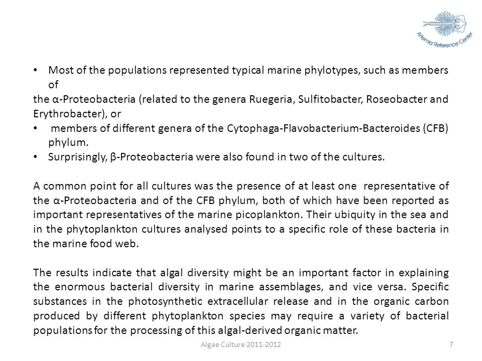 7 Most of the populations represented typical marine phylotypes, such as members of the α-Proteobacteria (related to the genera Ruegeria, Sulfitobacte