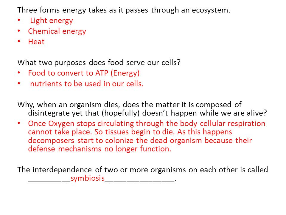 Three forms energy takes as it passes through an ecosystem. Light energy Chemical energy Heat What two purposes does food serve our cells? Food to con