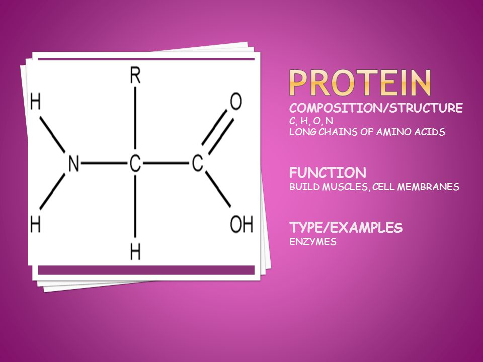 COMPOSITION/STRUCTURE C, H, O, N LONG CHAINS OF AMINO ACIDS FUNCTION BUILD MUSCLES, CELL MEMBRANES TYPE/EXAMPLES ENZYMES