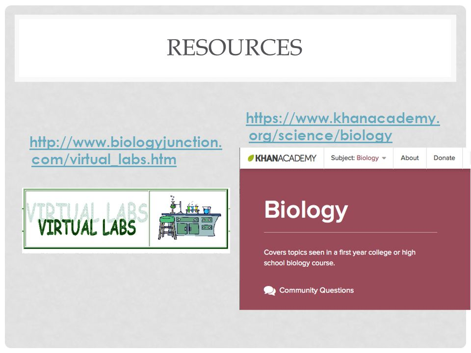 WHAT SHOULD I KNOW ABOUT THE EXAM? BIOLOGY EOC