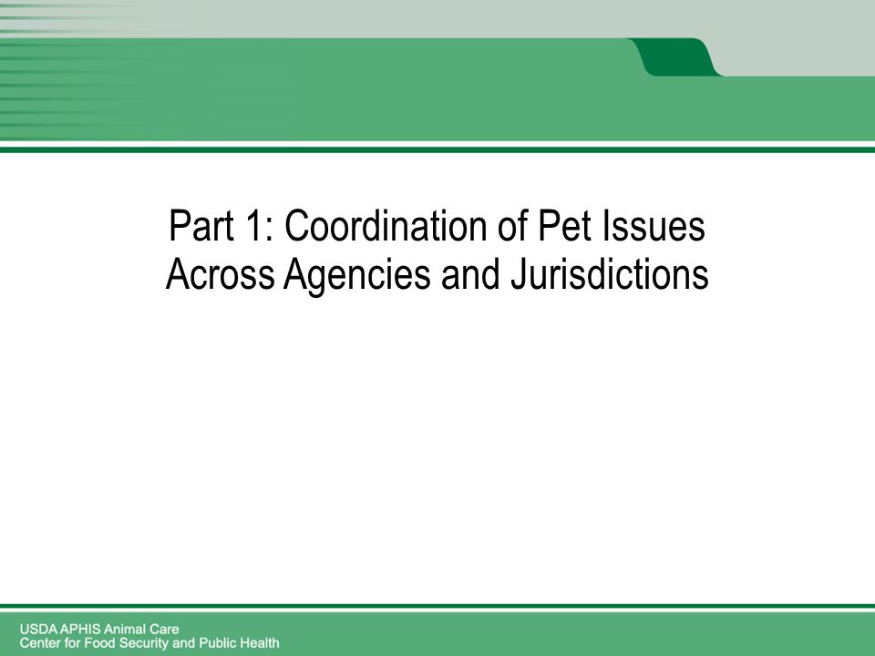 Part 1: Coordination of Pet Issues Across Agencies and Jurisdictions