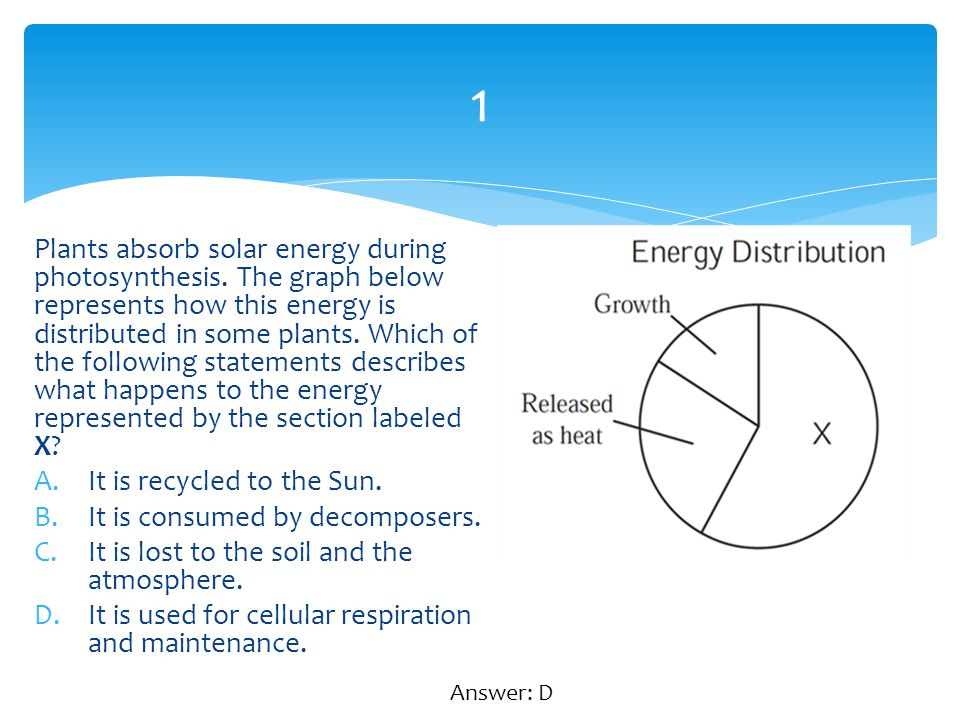 1 Plants absorb solar energy during photosynthesis. The graph below represents how this energy is distributed in some plants. Which of the following s