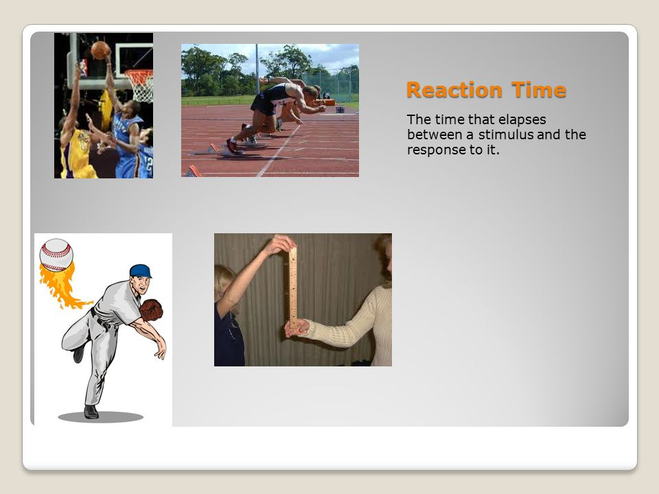 Reaction Time The time that elapses between a stimulus and the response to it.