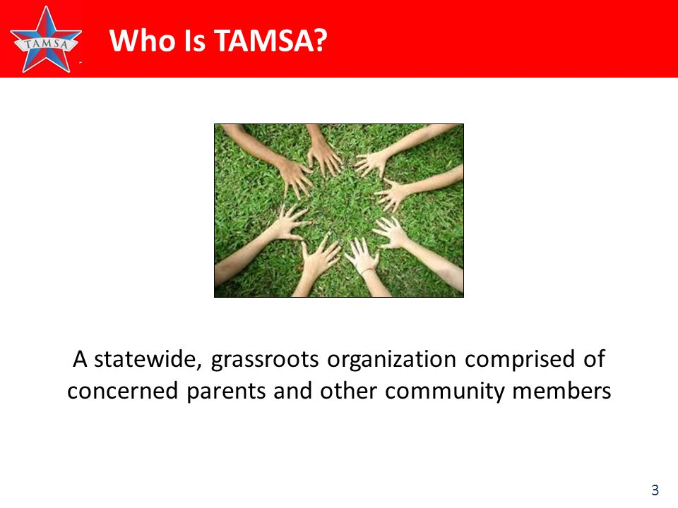 3 Who Is TAMSA.