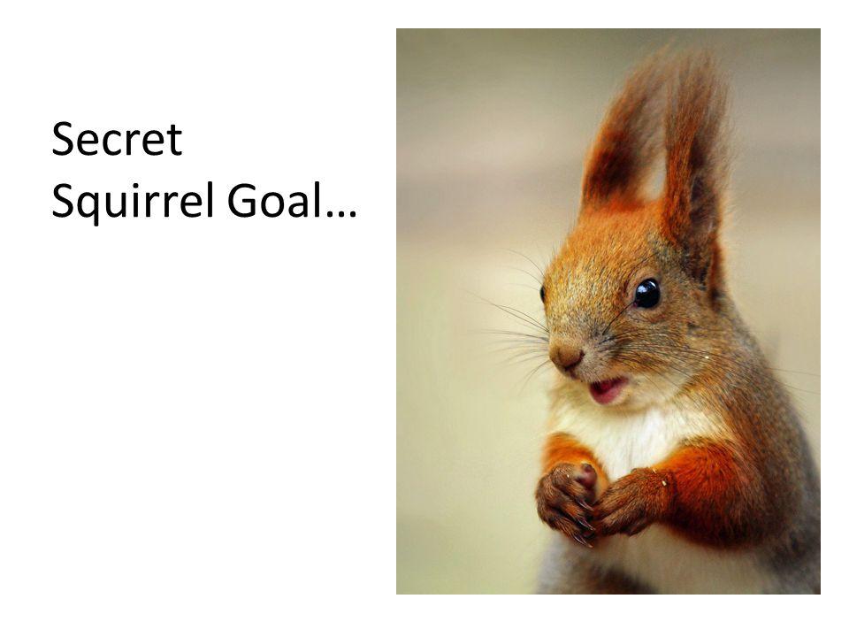 Secret Squirrel Goal…