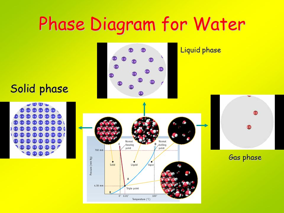 Phase Diagram for Water Solid phase Liquid phase Gas phase PLAY MOVIE