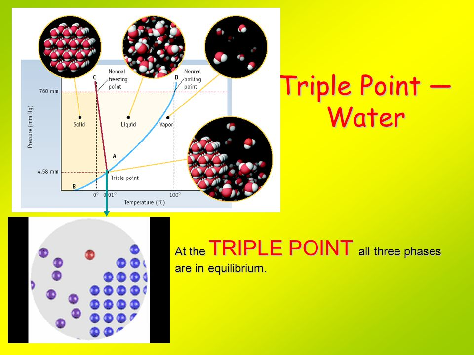 Triple Point — Water At the TRIPLE POINT all three phases are in equilibrium. PLAY MOVIE