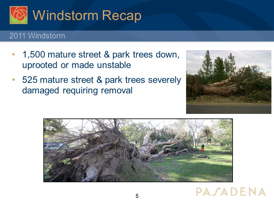 2011 Windstorm Windstorm Recap 1,500 mature street & park trees down, uprooted or made unstable 525 mature street & park trees severely damaged requiring removal 5