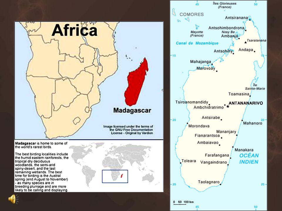 גיאוגרפיה האי מדגסקר, שייך לאפריקה מבחינה גיאוגרפית.