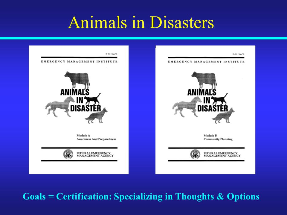 Animals in Disasters Goals = Certification: Specializing in Thoughts & Options