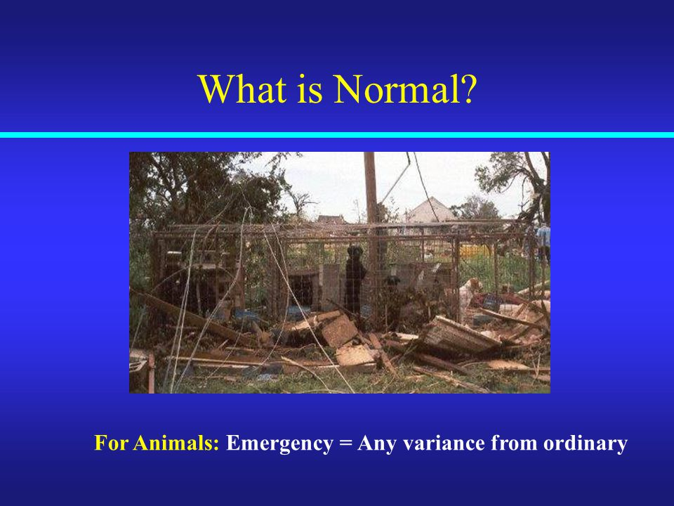 What is Normal For Animals: Emergency = Any variance from ordinary
