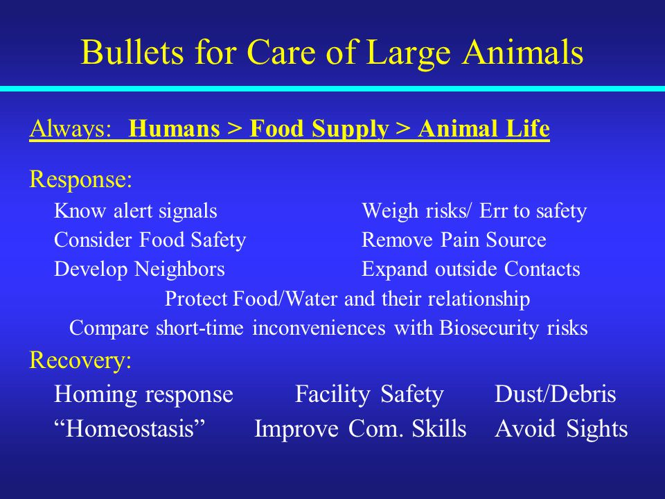 Bullets for Care of Large Animals Always: Humans > Food Supply > Animal Life Response: Know alert signalsWeigh risks/ Err to safety Consider Food SafetyRemove Pain Source Develop NeighborsExpand outside Contacts Protect Food/Water and their relationship Compare short-time inconveniences with Biosecurity risks Recovery: Homing response Facility SafetyDust/Debris Homeostasis Improve Com.