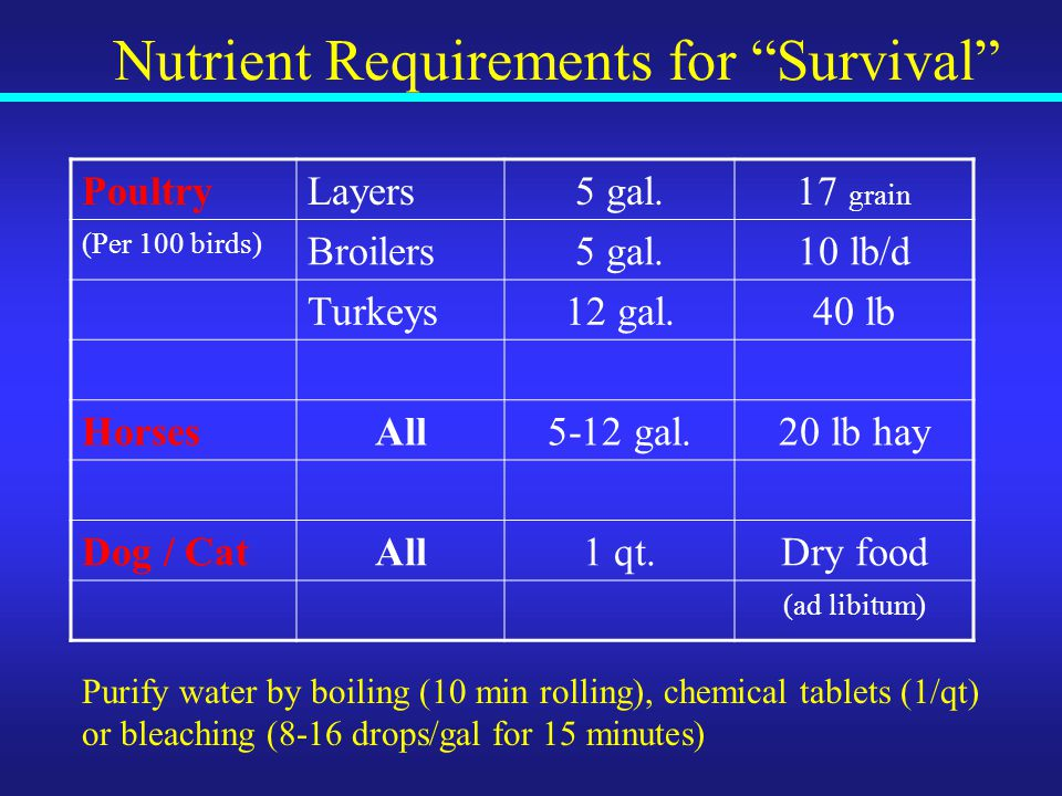 Nutrient Requirements for Survival PoultryLayers5 gal.17 grain (Per 100 birds) Broilers5 gal.10 lb/d Turkeys12 gal.40 lb HorsesAll5-12 gal.20 lb hay Dog / CatAll1 qt.Dry food (ad libitum) Purify water by boiling (10 min rolling), chemical tablets (1/qt) or bleaching (8-16 drops/gal for 15 minutes)