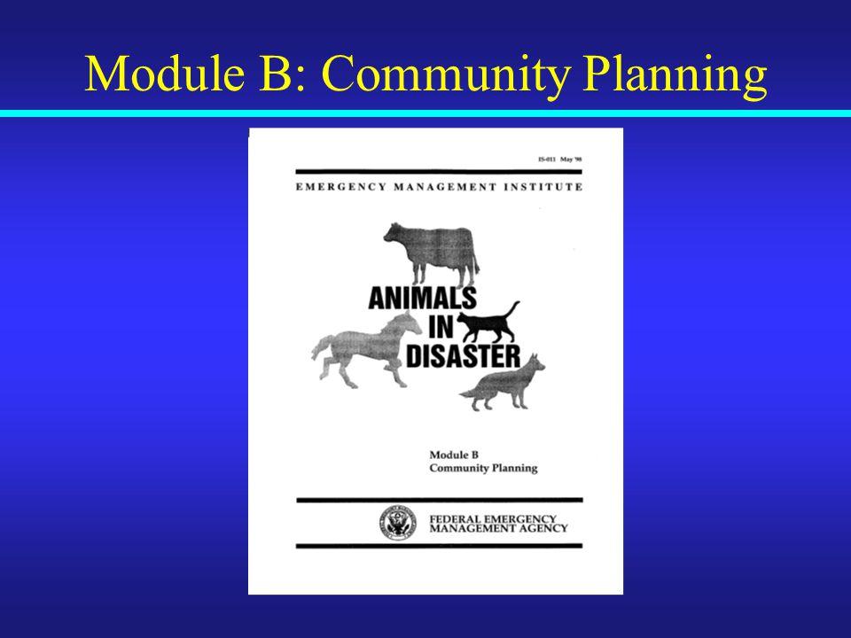 Module B: Community Planning