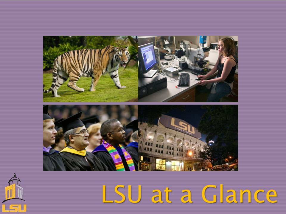 LSU at a Glance