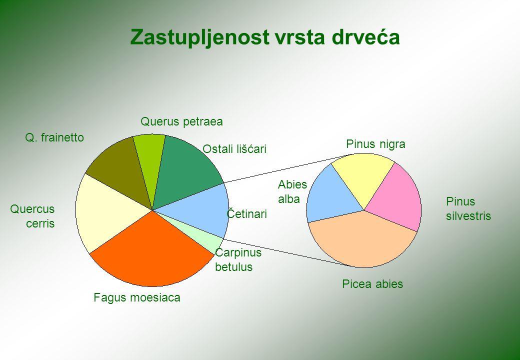 Zastupljenost vrsta drveća Quercus cerris Q.