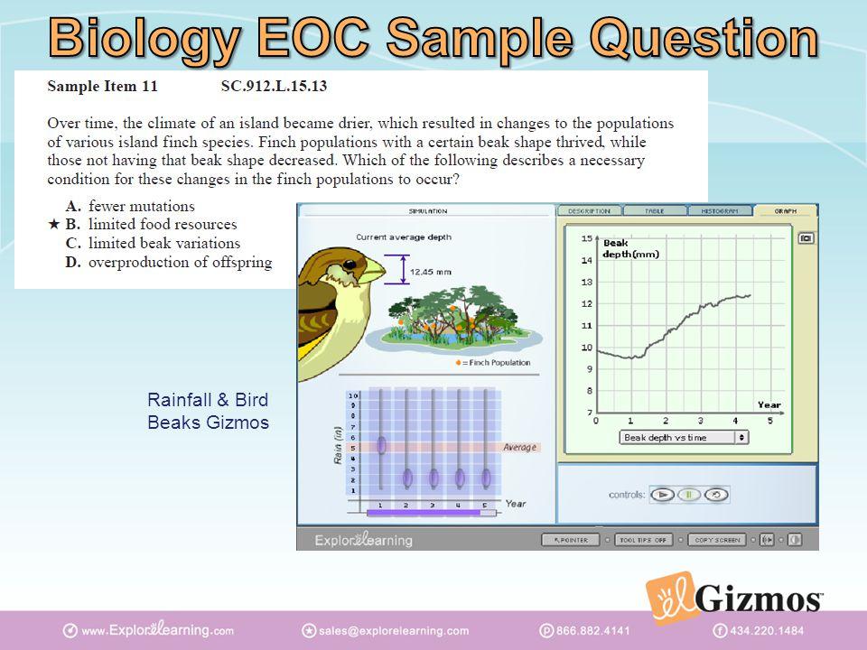 Rainfall & Bird Beaks Gizmos