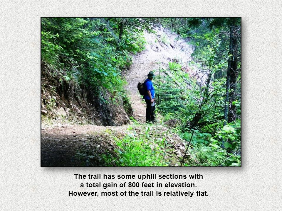 The trail has some uphill sections with a total gain of 800 feet in elevation.