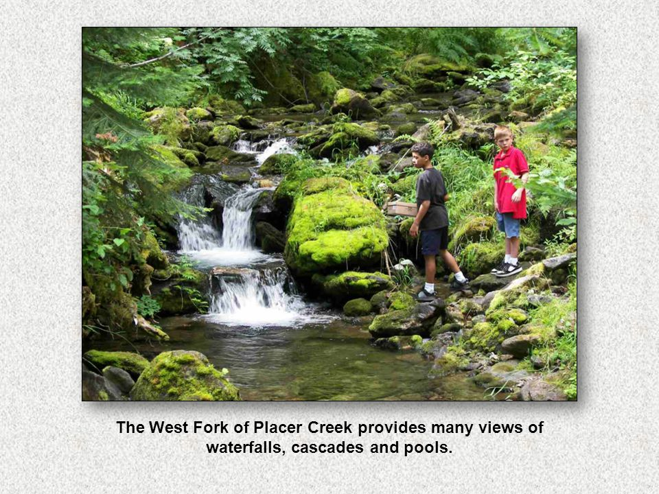 The West Fork of Placer Creek provides many views of waterfalls, cascades and pools.