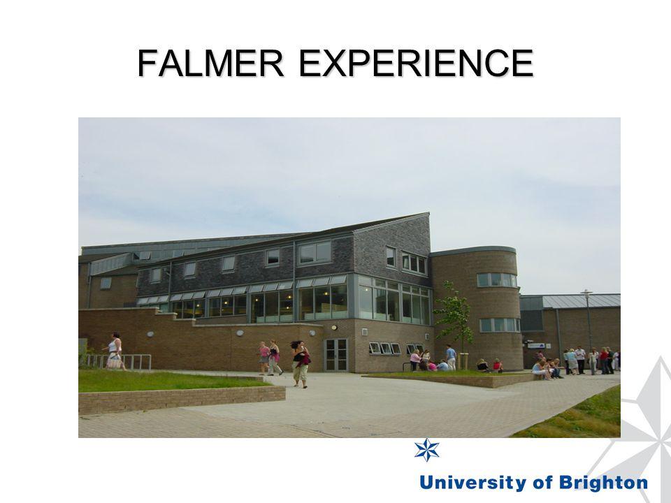 FALMER EXPERIENCE
