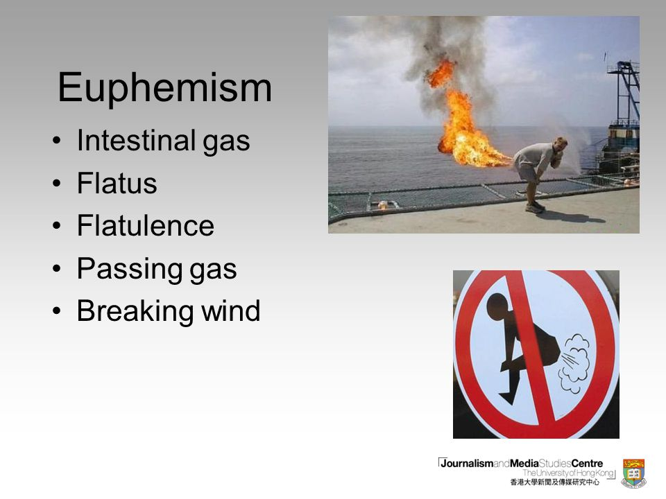Euphemism Intestinal gas Flatus Flatulence Passing gas Breaking wind